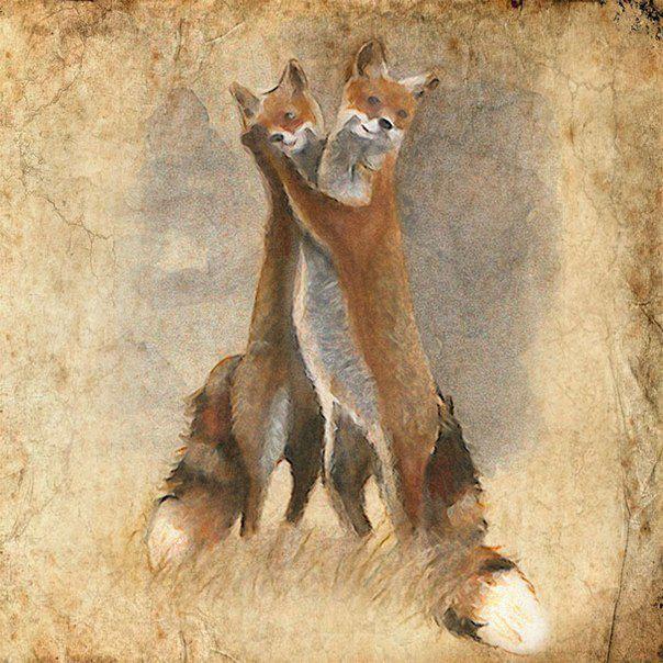 Ребятам о зверятах от художника Anne Boux, фото № 9