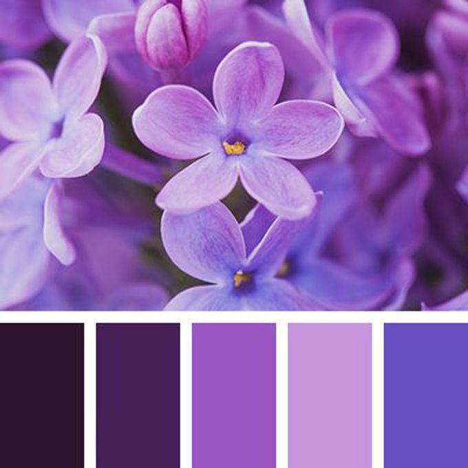 Сиреневый цвет как сделать фиолетовый