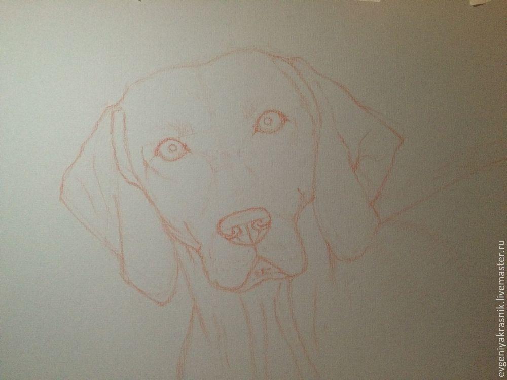 рисуем собаку пастелью