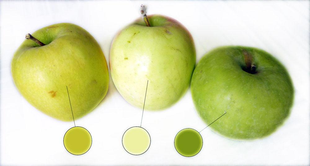 подбор цвета, цветовая гамма