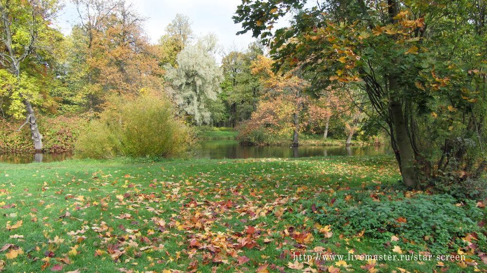 осень, осенний пейзаж