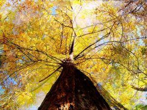 Осень (новенькая). Ярмарка Мастеров - ручная работа, handmade.