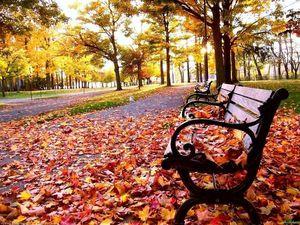 Прекрасное время года-осень!. Ярмарка Мастеров - ручная работа, handmade.