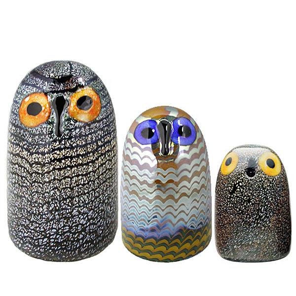 birds of glass