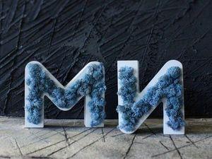 Буквы из мха заказать. Ярмарка Мастеров - ручная работа, handmade.