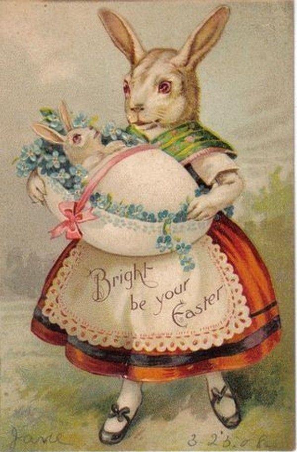 Пасхальные открытки с зайцами, днем учителя красивое