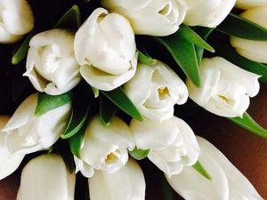 Поздравляю с 8 марта!!!. Ярмарка Мастеров - ручная работа, handmade.