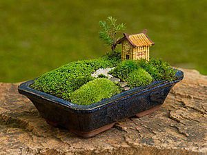 A Miniature Garden on Your Window-Sill. Livemaster - handmade