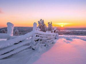 Вдохновение...Художница - Зима.. Ярмарка Мастеров - ручная работа, handmade.