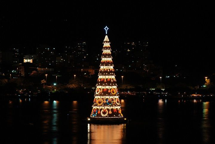 10 Interesting Facts About a Christmas Tree, фото № 8