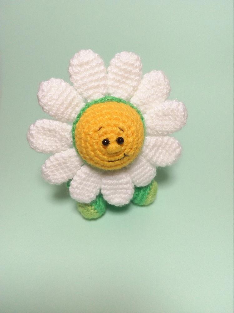 ромашка, фиалка, милый цветок