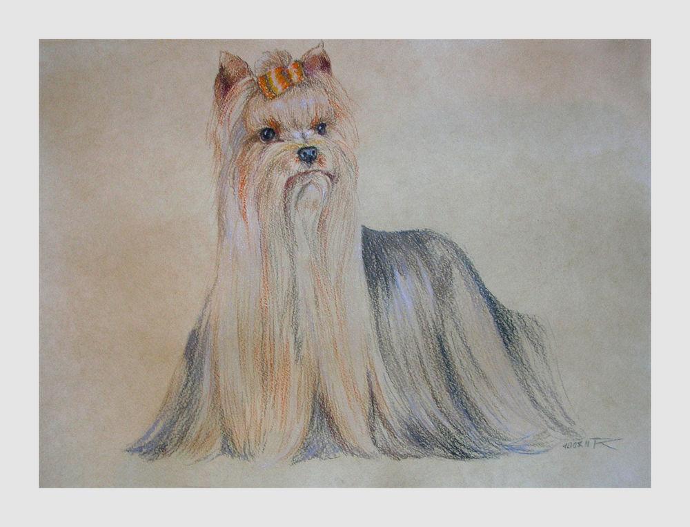 скидка, пастельная картина, собака