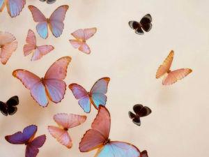Бабочки прилетели! Ловите!. Ярмарка Мастеров - ручная работа, handmade.