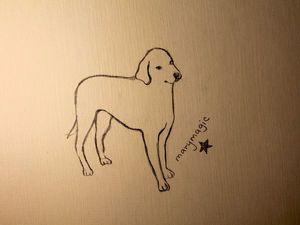 Видео мастер-класс для начинающих: как нарисовать собаку. Ярмарка Мастеров - ручная работа, handmade.