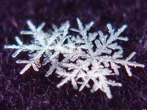 Ученые создают огромные снежинки ). Ярмарка Мастеров - ручная работа, handmade.