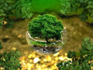 Экология и хозяйство. Ярмарка Мастеров - ручная работа, handmade.