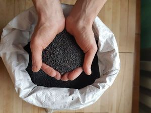 Только чёрный кунжут!. Ярмарка Мастеров - ручная работа, handmade.