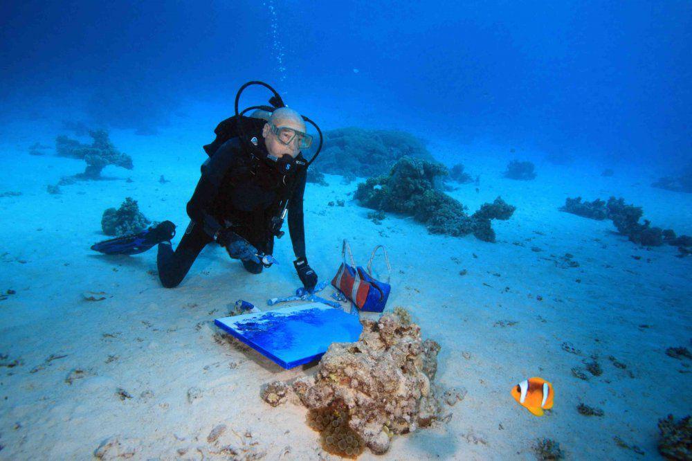 подводный мир, корабли