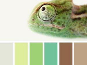 Черпаем вдохновение цветом в мире квакающих и ползающих. Часть 7 | Ярмарка Мастеров - ручная работа, handmade