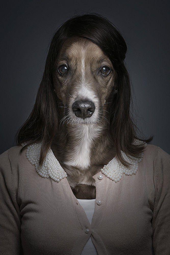 dog that looks human - 560×840