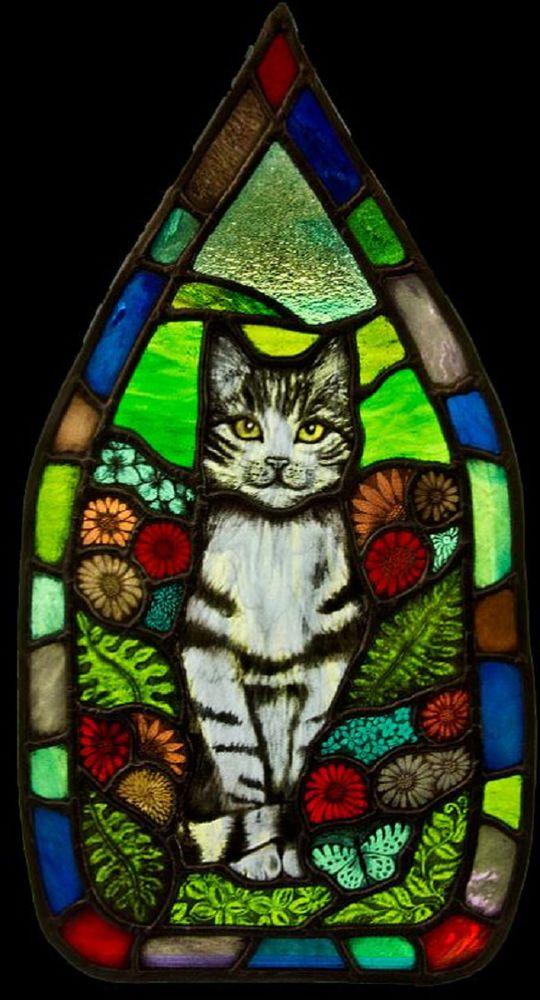 для собачек витраж на кошачий фото для ресторанов