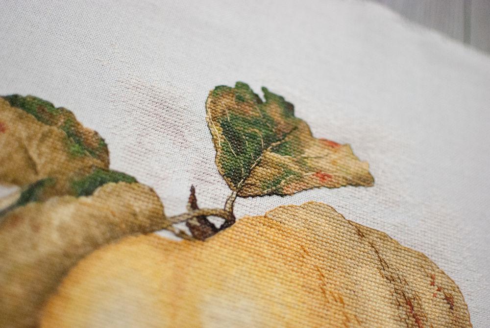 айва, вышивка крестиком