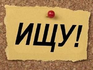Кто был на выставке hello teddy 2016 ? Может знаете автора? | Ярмарка Мастеров - ручная работа, handmade