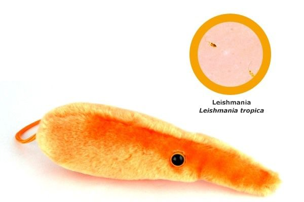 мягкие игрушки бактерии
