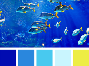 Вдохновение морем: 25 цветовых палитр подводного мира. Ярмарка Мастеров - ручная работа, handmade.