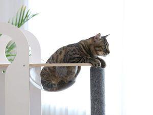 Дизайнеры Tuft + Paw придумали, как развлечь кота и украсить дом хозяина. Ярмарка Мастеров - ручная работа, handmade.