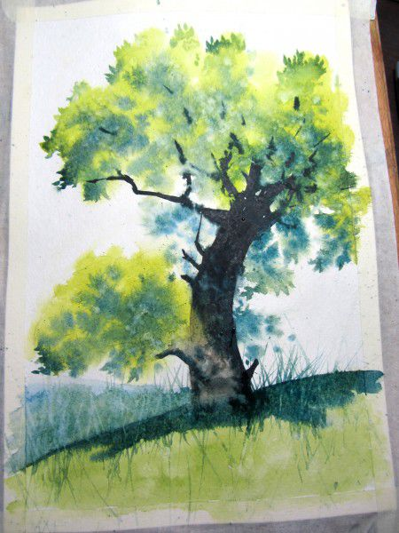 Как нарисовать дерево акварелью, фото № 22