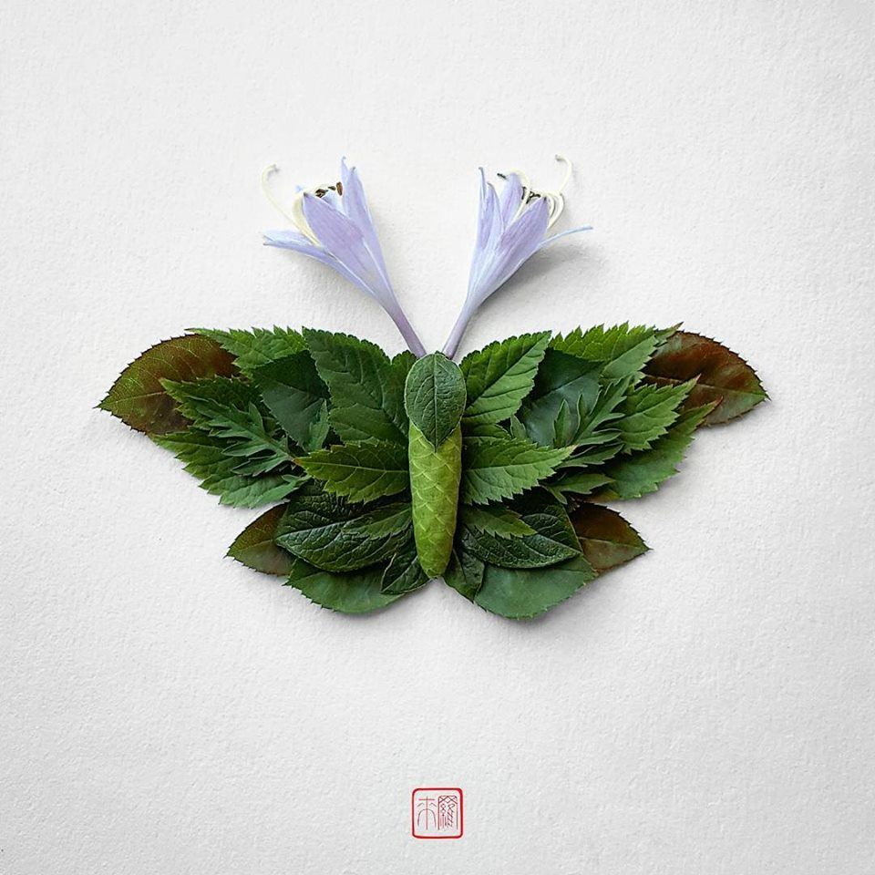 Petal Magic: Unusual Compositions by Raku Inoue, фото № 14