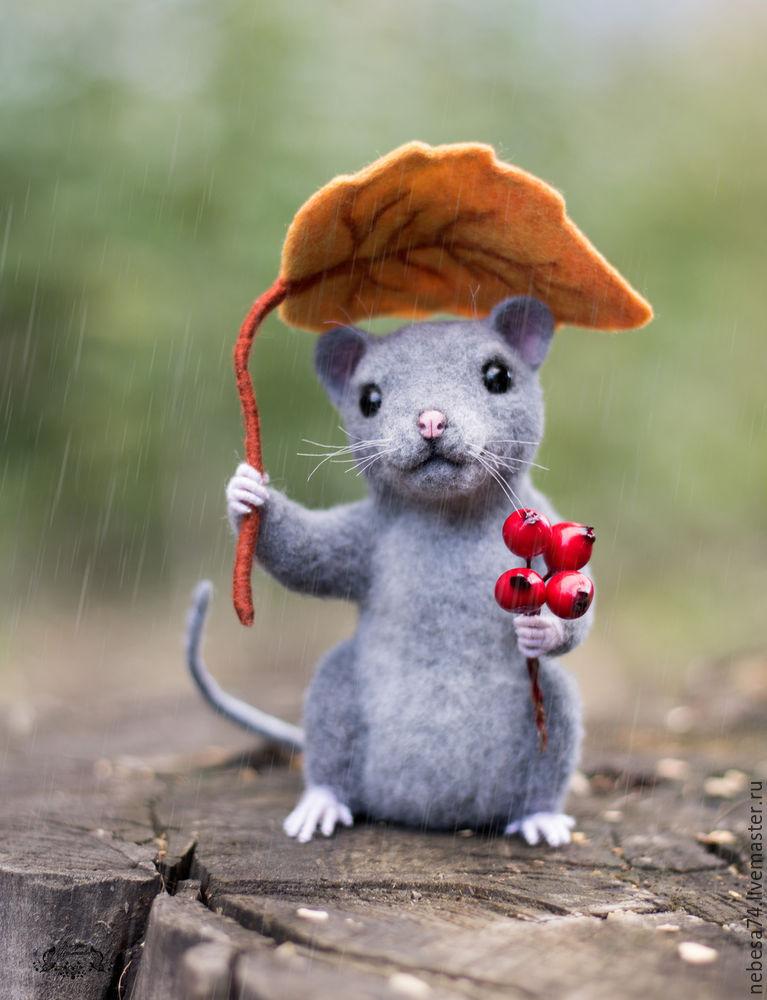 открытка мышка фото сильно выступающей является