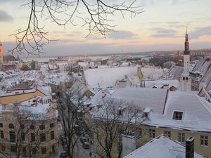 Рождественские каникулы в Прибалтике. Таллин - любовь моя. Продолжение   Ярмарка Мастеров - ручная работа, handmade