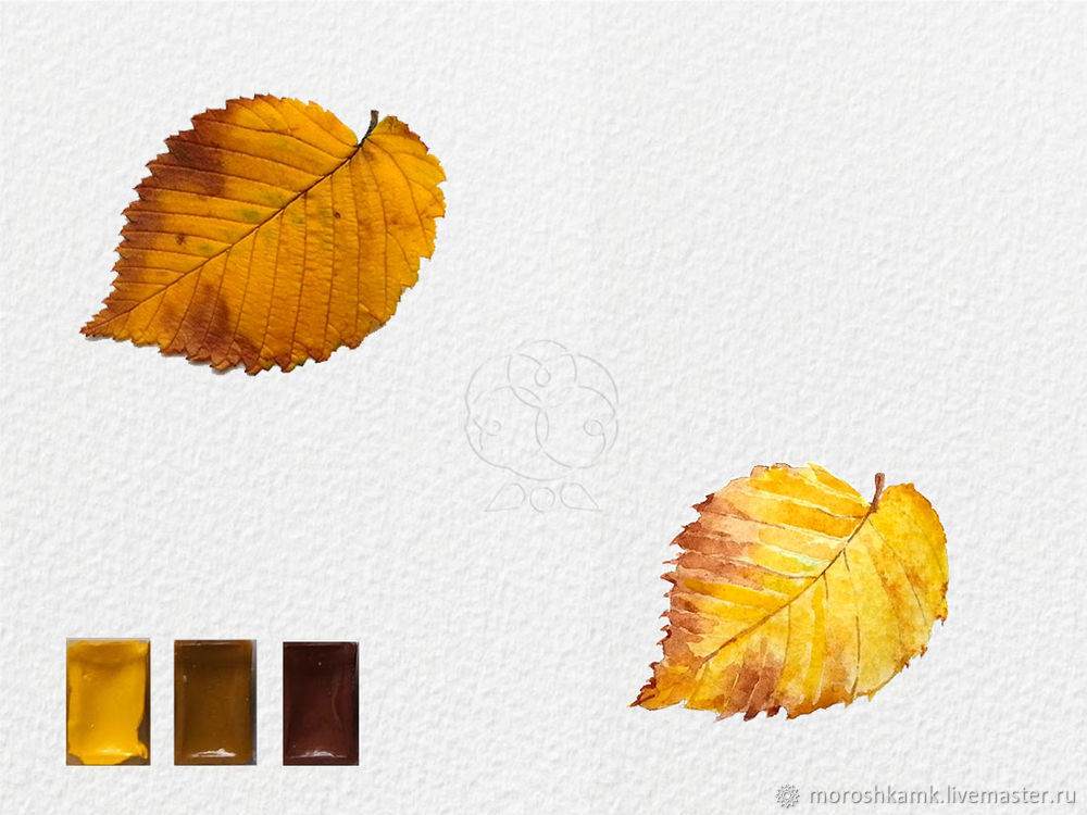 Drawing an Autumn Leaf with Watercolours, фото № 14