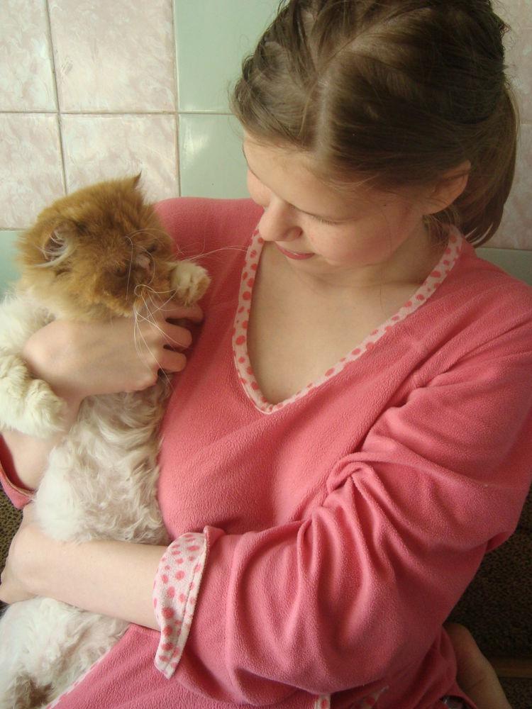 кот, животные в доме