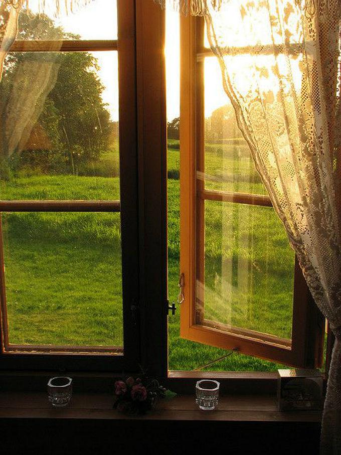 пейзаж за окном