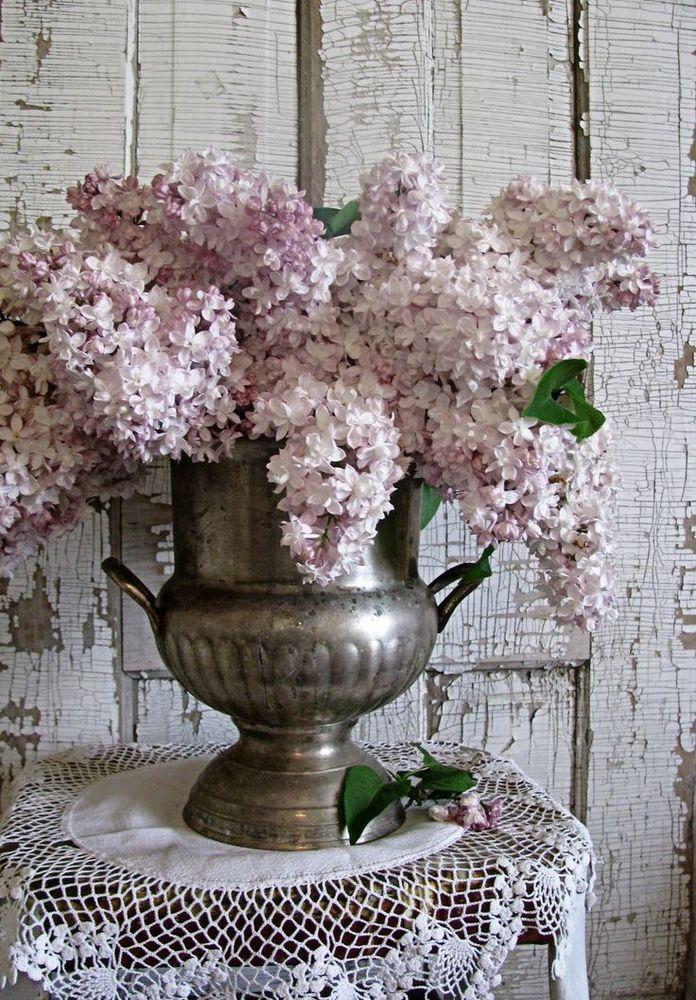 lilacs w/ silver