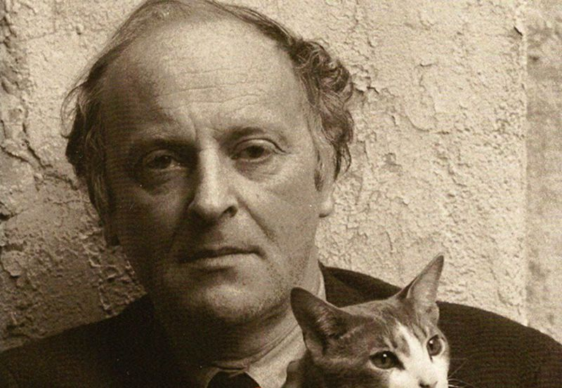 поэт, кошки