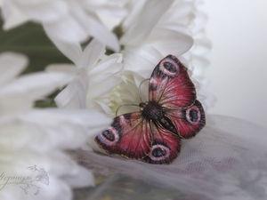 О новых бабочках. Ярмарка Мастеров - ручная работа, handmade.