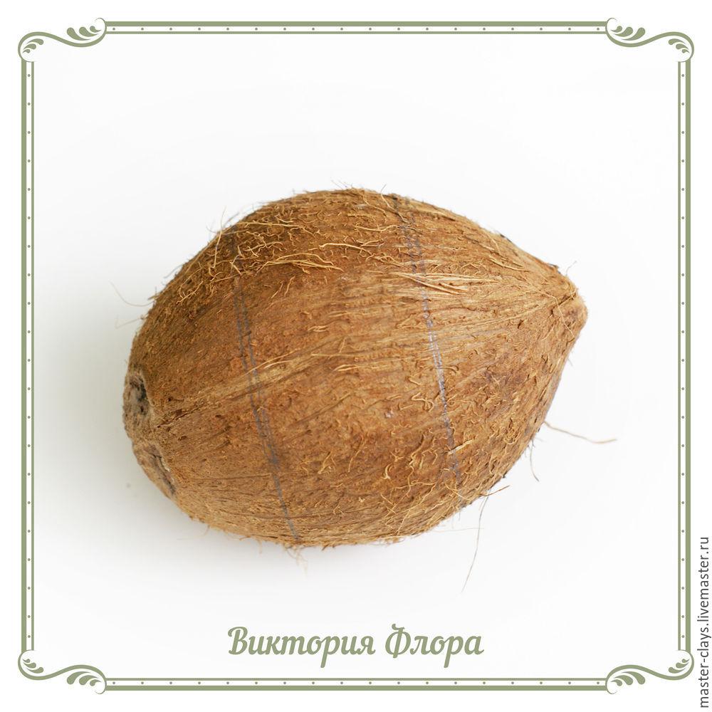 кокос, браслет из кокоса