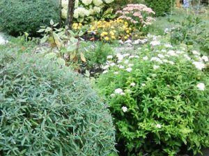 Сад — источник вдохновения. Ярмарка Мастеров - ручная работа, handmade.