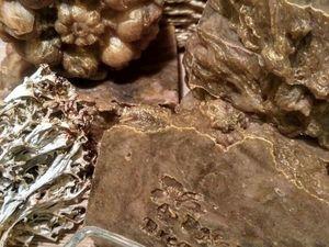 Мыло Лекарь с экстрактом Gotu Cola Август 2018. Ярмарка Мастеров - ручная работа, handmade.