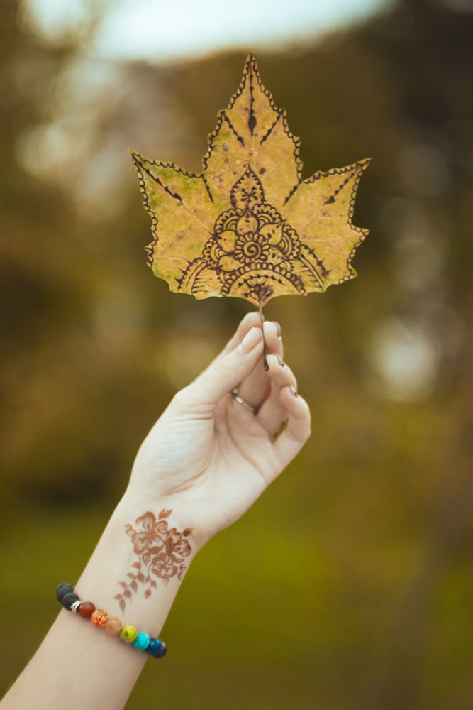 Идея для вдохновения: роспись осенних листьев в стиле мехенди., фото № 2