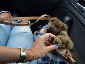 Медведи BOYDS- самые милашные создания!!! (и зайцы тоже). Ярмарка Мастеров - ручная работа, handmade.