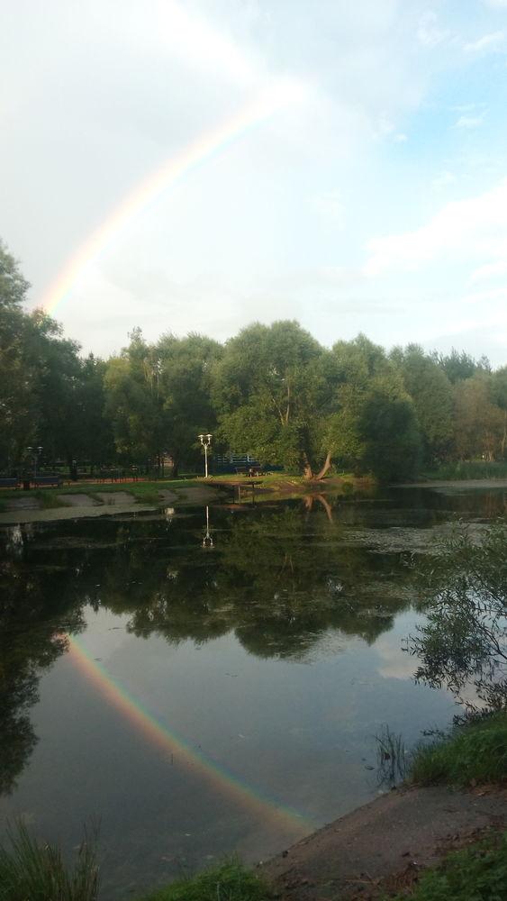 природа россии, место силы, матушка природа, фото природы дуб, природа лучший художник