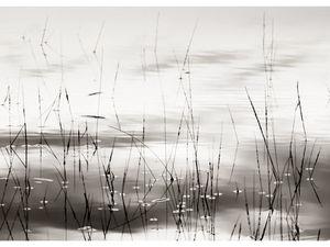 Первый всероссийский конкурс интерьерной авторской фотографии. Ярмарка Мастеров - ручная работа, handmade.