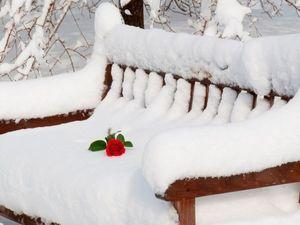 Варежки — самый Тёплый подарок!. Ярмарка Мастеров - ручная работа, handmade.