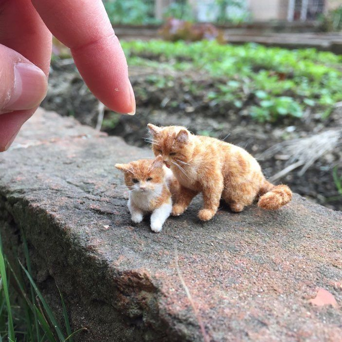Awww Miniatures: Adorable Pets by Tomoko Masakage, фото № 23