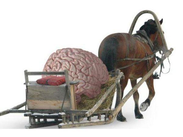 Как плавятся мозги... | Ярмарка Мастеров - ручная работа, handmade